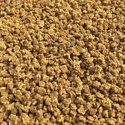 Семена свекла микрозелень , фото 2