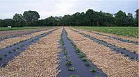 Агроволокно Agroterm Marma П 50 3,2 * 100 черное Польша