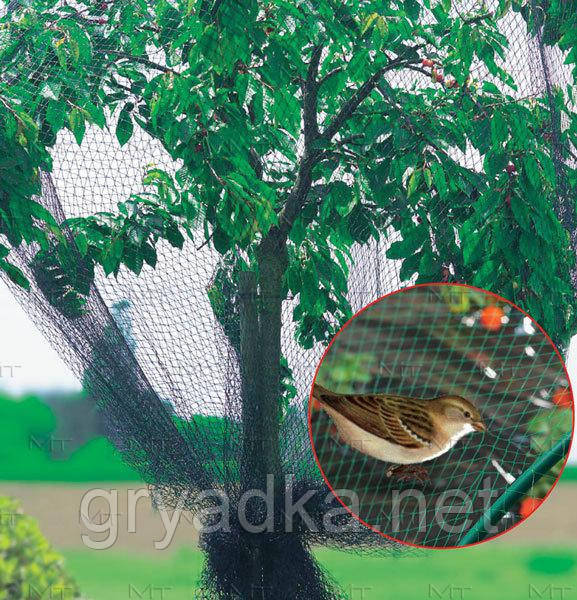 Сетка для защиты деревьев от птиц М-400 4*20 м Intermas