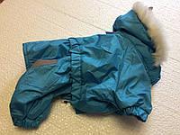 Комбинезон Сильвер 28 см разм Мопс голубой для собак