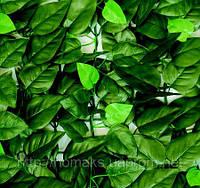 """Декоративное покрытие """"Молодые листья"""" 100х300 см"""