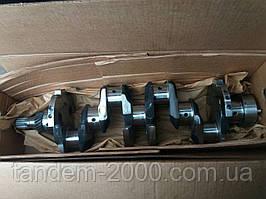 Вал коленчатый МТЗ Д-240/243 (2-шпонки с шестерней без вкладышей) (ММЗ) 243-1005015