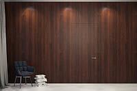 Скрытые двери Шпон модифицированный под лаком глянец + полировка
