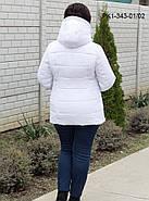 Женская демисезонная короткая куртка / размер 48,50,56, фото 2