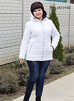 Женская демисезонная короткая куртка / размер 48-58