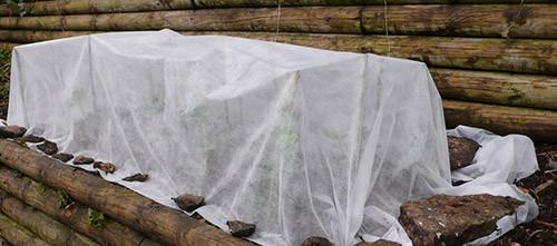 укрытие клубники на зиму,как подготовить клубнику к зимовке - советы