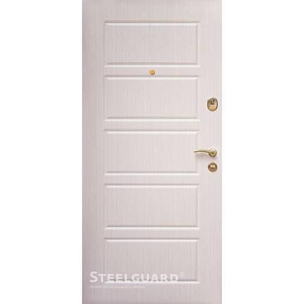 Вхідні двері Стілгард Steelguard серія Risola DG, фото 2