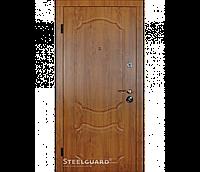 Вхідні двері Стілгард Steelguard серія Resiste DO-23