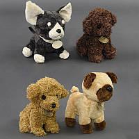Мягкая игрушка Собачка С 22785