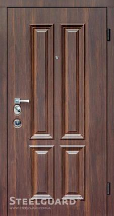 Вхідні двері Стілгард Steelguard серія Devi Clasic, фото 2