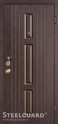 Вхідні двері Стілгард Steelguard серія Devi Fort, фото 2