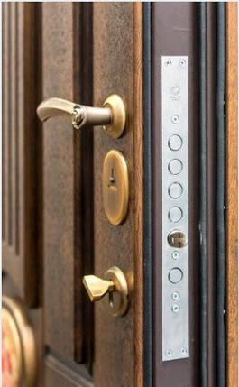Вхідні двері Стілгард Steelguard серія Forte SG, фото 2
