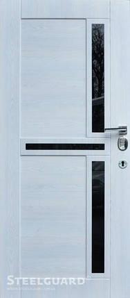 Вхідні двері Стілгард Steelguard серія Forte+ Neoline, фото 2