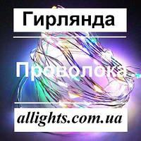 Гирлянда проволока LED светодиодная новогодняя декоративная 10м 100 LED, фото 1