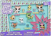 Игровой набор Hasbro LPS Home Buddies Pack Коллекция петов B9343-C1674