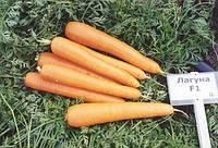 Морковь Лагуна F1  100 000 семян (1,8 - 2,0 мм)