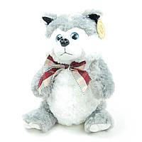 Мягкая игрушка Собака Хаски упаковка для подарка