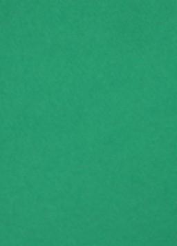 Бумага пастельная А4, 21*29,7 см, 160 г/м2, зеленый 12, среднее зерно, Tiziano Fabriano, 164112