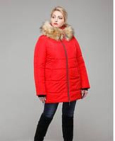 Куртка зимняя больших размеров h-h 52-60