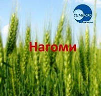 Инсектицид Нагоми - 1  кг (Саммит-агро)