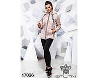 Ledi M Женская зимняя куртка BL 17026 пудра Леди М