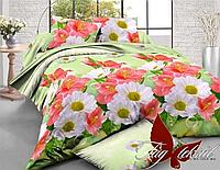 Комплект постельного белья XHY1064 полуторный (TAG policotton-371)