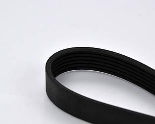 Поликлиновый (ручейковый) ремень на Renault Dokker 2012-> 1.5dCi — Renault (Оригинал) - 8200821816