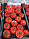 Семена томата Минарет F1 \ Minaret F1  Syngenta 500 семян, фото 2