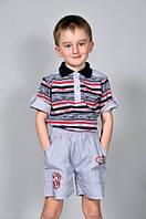 Детская одежда футболка для мальчика 1184