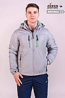 Мужская демисезонная куртка Avecs 634722 весна / осень утеплитель Eiderdown недорого | куртка Avecs размер
