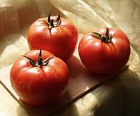 Семена томата Царин F1 \ Caryn F1 Syngenta 500 семян