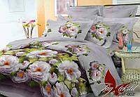 Комплект постельного белья HL002 полуторный (TAG policotton-372)