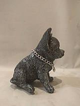 Статуэтка (копилка) щенок Чихуа серебро, фото 3