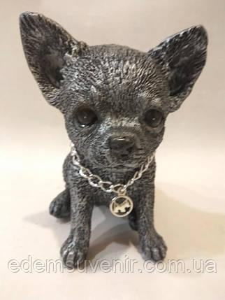 Статуэтка (копилка) щенок Чихуа серебро, фото 2
