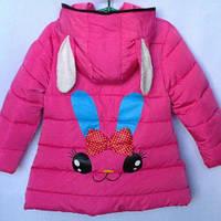 Еврозима. Демисезонная куртка для девочек 4-8 лет, фото 1