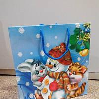 Пакет подарочный новогодний детский 24*24 см