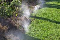 Борьба с комарами и другими насекомыми с помощью системы туманообразования!!!!