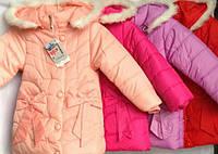 Куртка для девочек 4-6 лет. Зимова куртка. Еврозима., фото 1