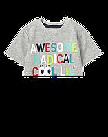 Детская трикотажная футболка Gymboree для мальчика