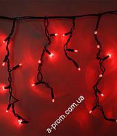 """Гирлянда светодиодная уличная """"Бахрома"""" 100ламп (LED) черный/белый кабель (каучук), красная"""