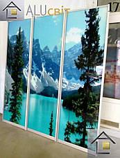 Фасади (двері) купе фотодрук, фото 2
