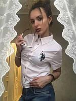 Рубашка поло женская ткань хлопок акция!