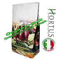 Свекла ЦИЛИНДРА / CILINDRA ТМ Hortus (Италия) фермерская упаковка 500 грамм