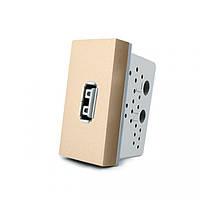 Розетка USB Livolo с блоком питания 2.1А, 5V, цвет золотой (VL-C7-1USB-13)