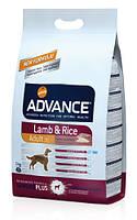 Корм ADVANCE (Эдванс) Dog Lamb Rice с ягненком и рисом для взрослых собак, 12 кг