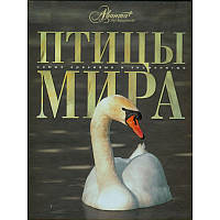 Птицы мира (русск.), Аванта