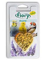 Минеральная добавка для мелких птиц Fiory Hearty 40 г
