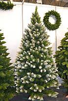 Искусственная елка Лесная Королева с белыми кончиками 2.20, фото 3