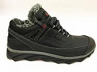 Мужские зимние кожаные ботинки Ecco Natural Motion Winter black