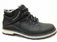 Мужские  зимние кожаные ботинки Natural Motion ege 1943 black, фото 1